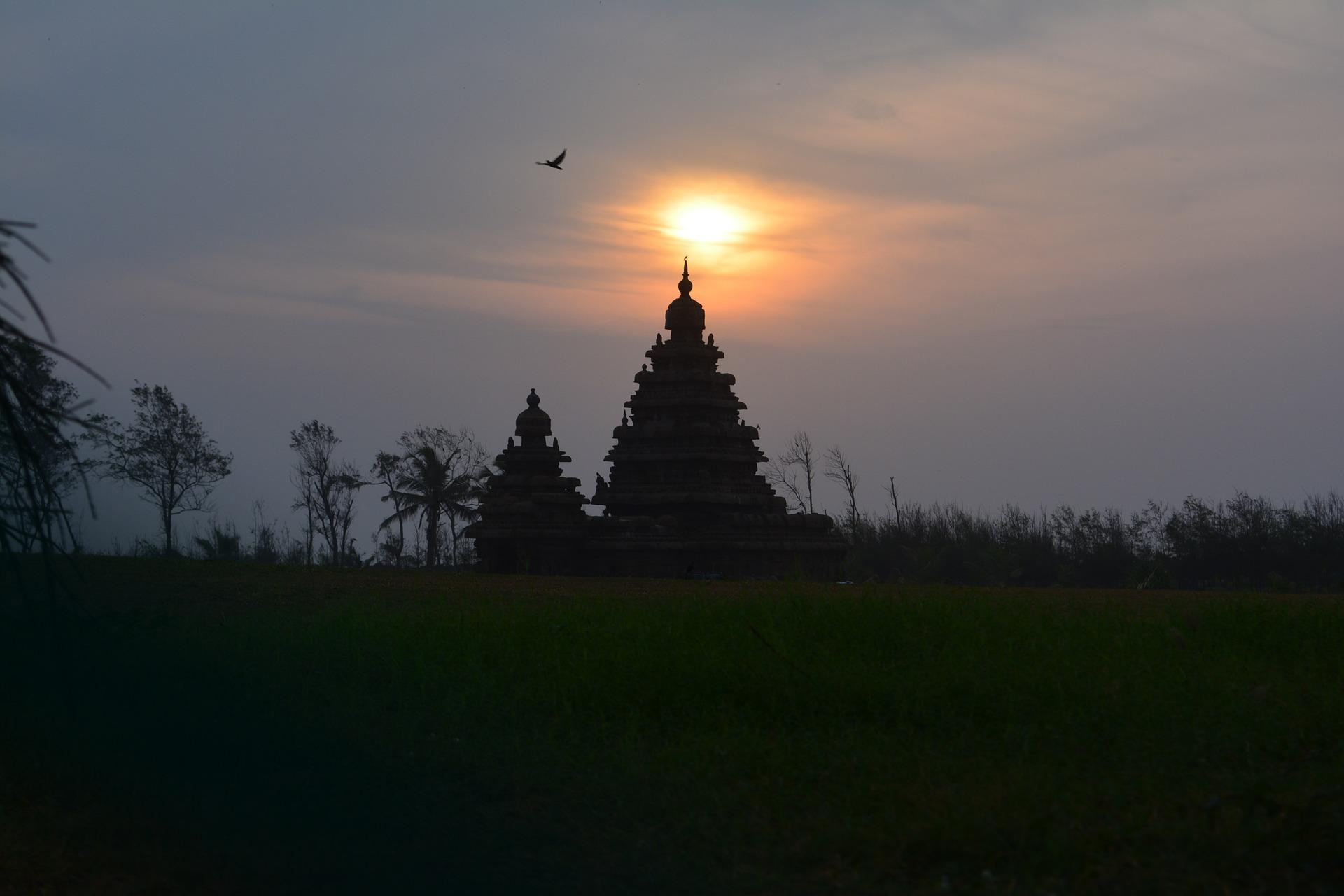Adventour - India - Tamil Nadu - Mahabalipuram