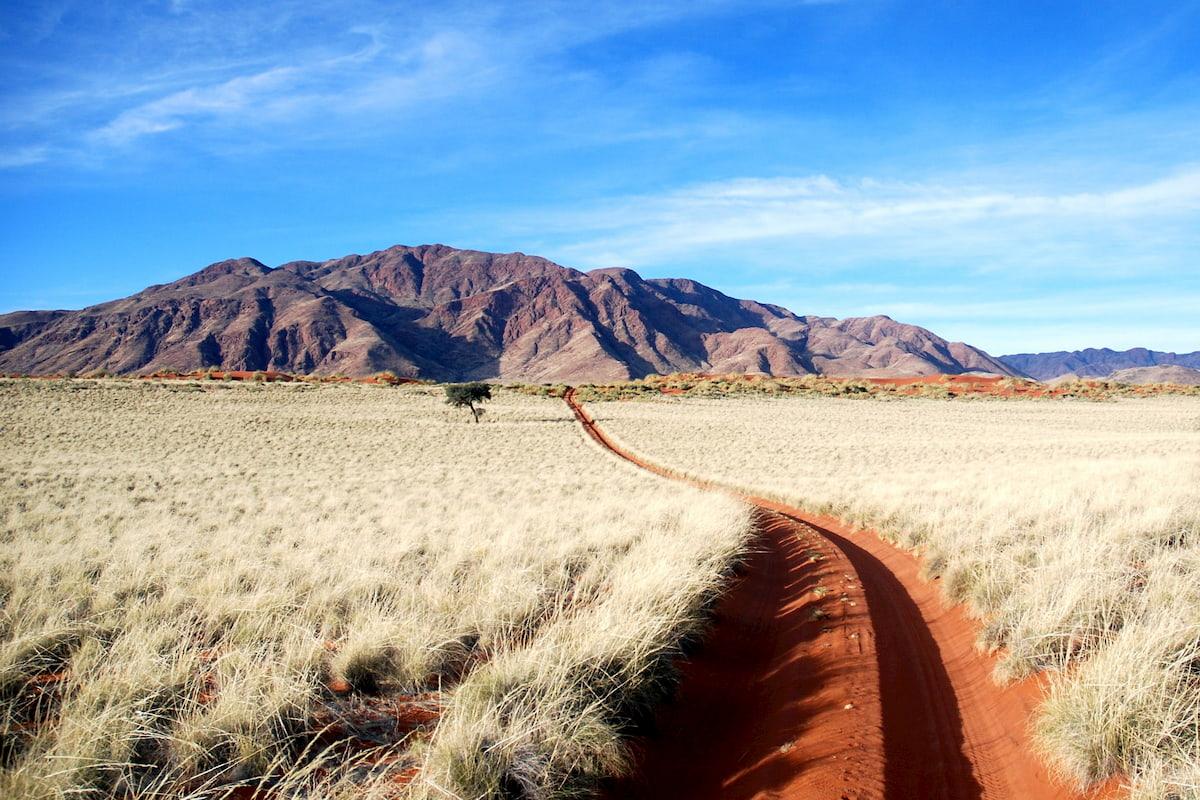 Africa - Namibia - Wolvedans Namib Rand Reserve