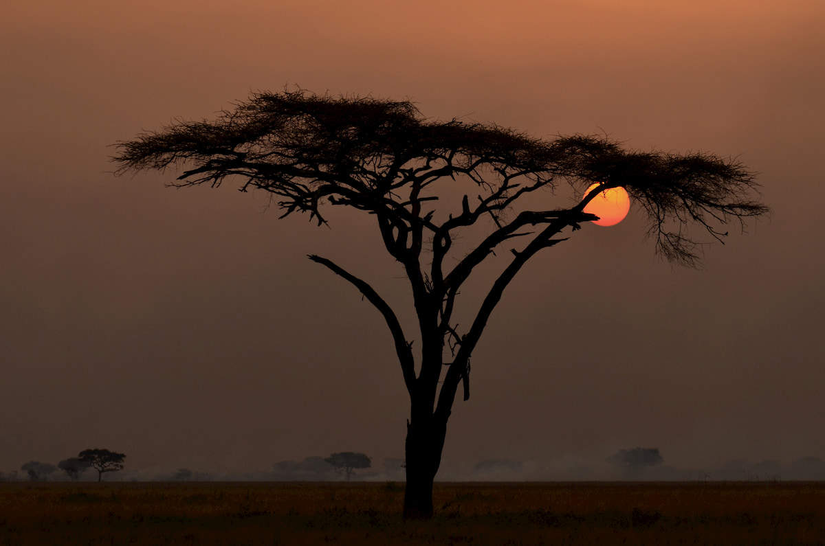 Africa - tramonto