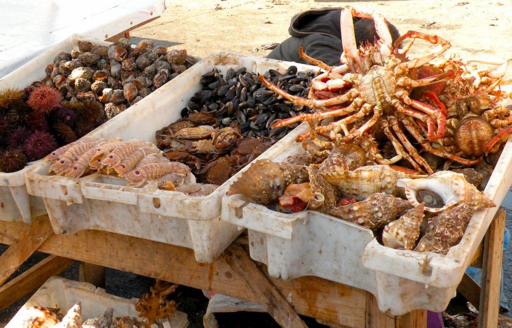 Marocco Essaouira porto pesce Adventour - Viaggi su misura verso Marocco, India, Sudafrica, Botswana, Costa Rica.