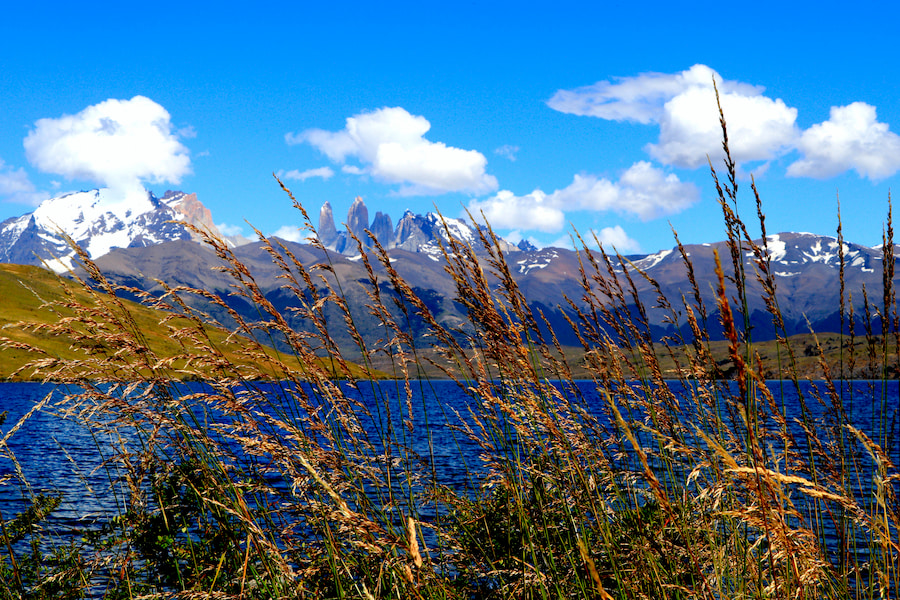 Adventour - Patagonia - Puerto Natales