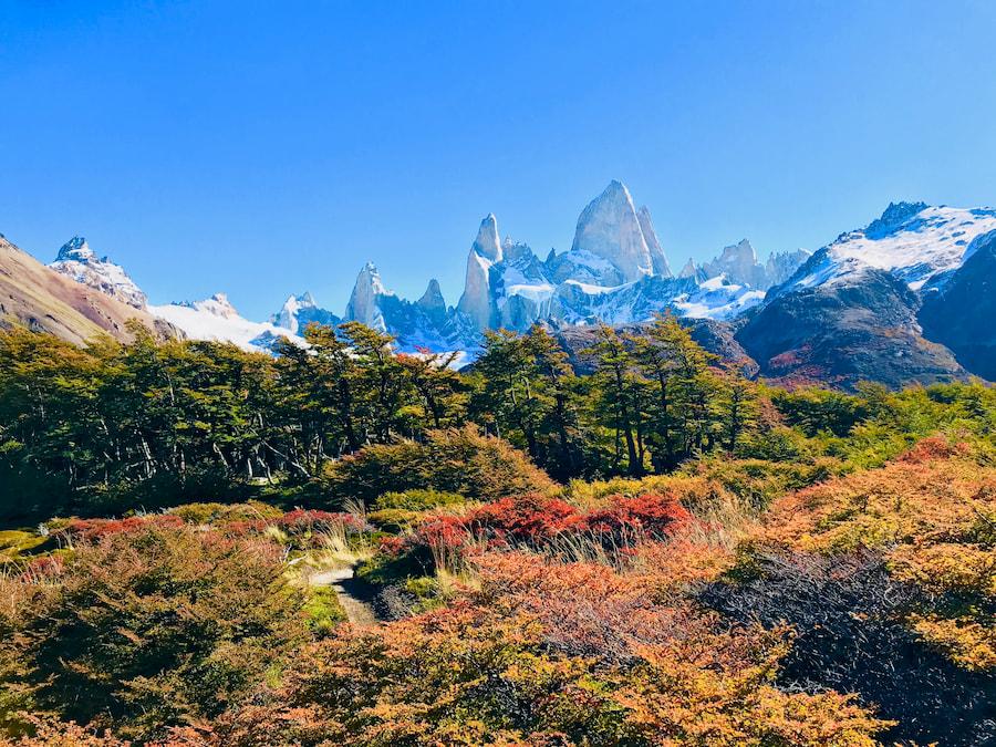 Adventour - Patagonia - Torres del Paine