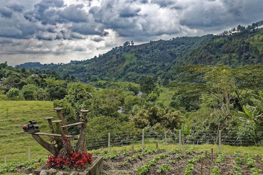 Adventour - Colombia - Salento - colline